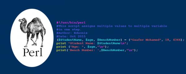 زبان برنامه نویسی پرل